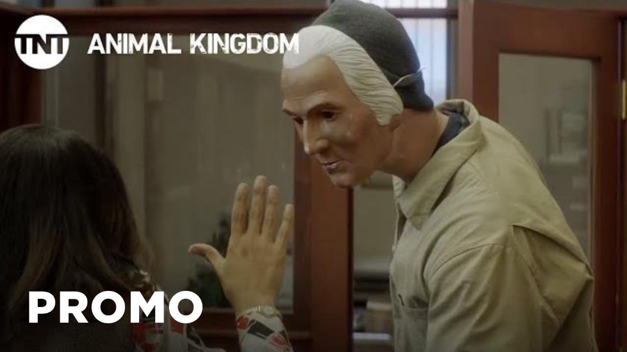 Animal Kingdom' Season 4, Episode 1