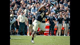 Rondale Moore Puts Up Video Game Numbers vs. Vanderbilt | 13 Rec, 220 Yards, TD