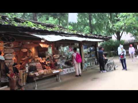 Summer Vlog: Korean Folk Village (Aug 1, 2013)