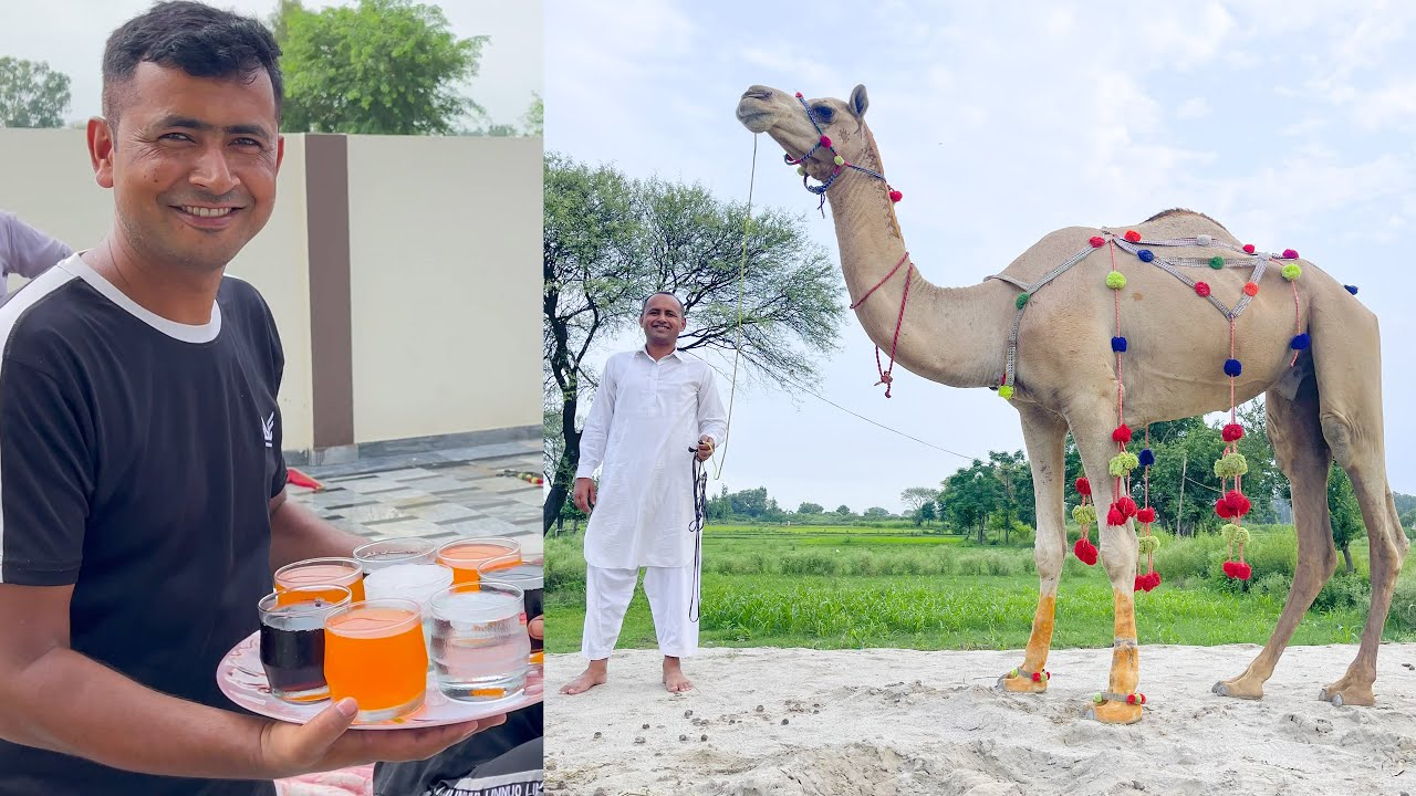 Eid Ul Adha Second & 3rd day Routine (#36) at our New Home