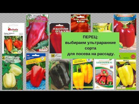 ПЕРЕЦ: выбираем ультраранние сорта для посева на рассаду. | описание | перец_2019 | сладкий | рассада | семена | отзывы | сорта | перцы | перца | перец