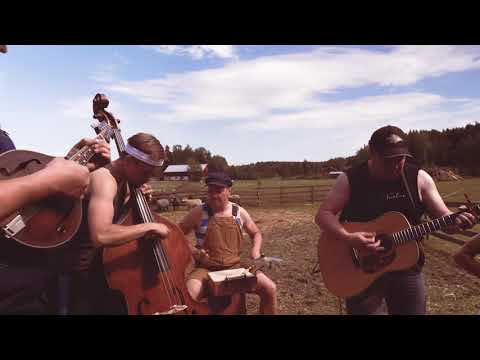 Gimme All Your Lovin' By Steve'n'Seagulls (LIVE)