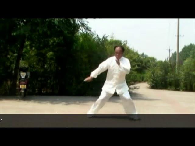Chen Tian Hui - Tai Chi style Chen Xiaojia Yilu [ 陈氏太极拳 小架 Taijiquan style Chen Xiaojia]