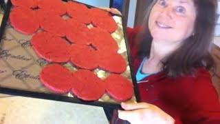 Dehydrating Juice Pulp To Make Crackers
