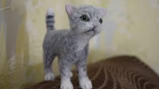 Мастер-класс по валянию котёнка