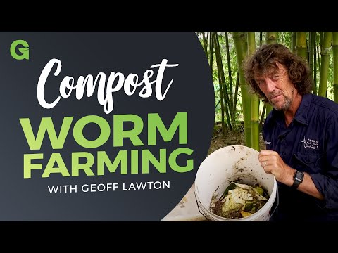 Compost Worm Farming
