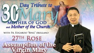 30 DAY TRIBUTE TO MARY 27TH ROSE:    Assumption of the Virgin Mary