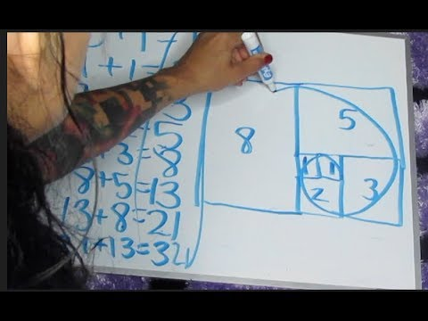 HIDDEN TRUTH OF Fibonacci sequence/ SACRED GEOMETRY