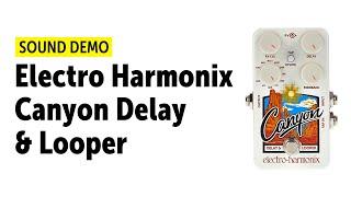 Electro-Harmonix Canyon Delay & Looper - Sound Demo (no talking)