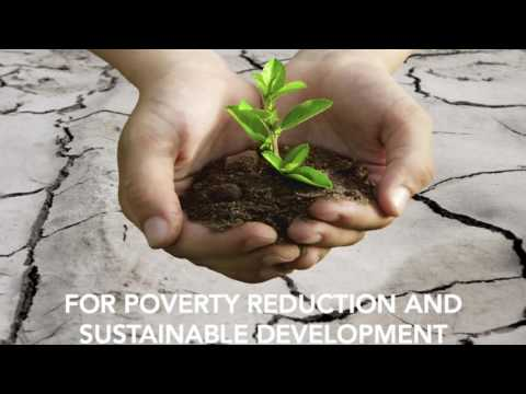 United Nations Environment Programme - Invitation Video