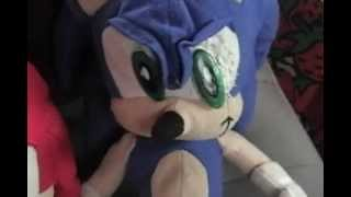Sonic and the Others in Florida - Part 2