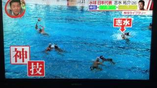 水球日本代表 志水祐介選手 水球女子 検索動画 28