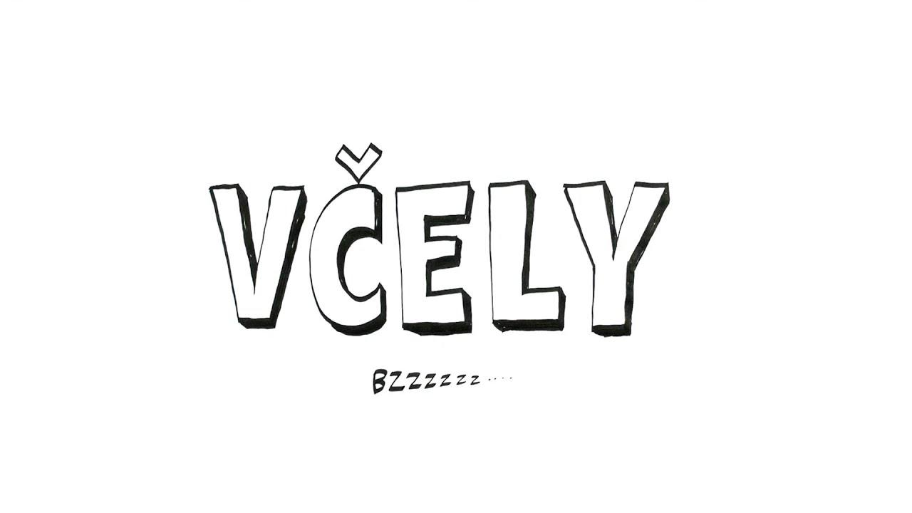 Dokument včely - Pavel Liška