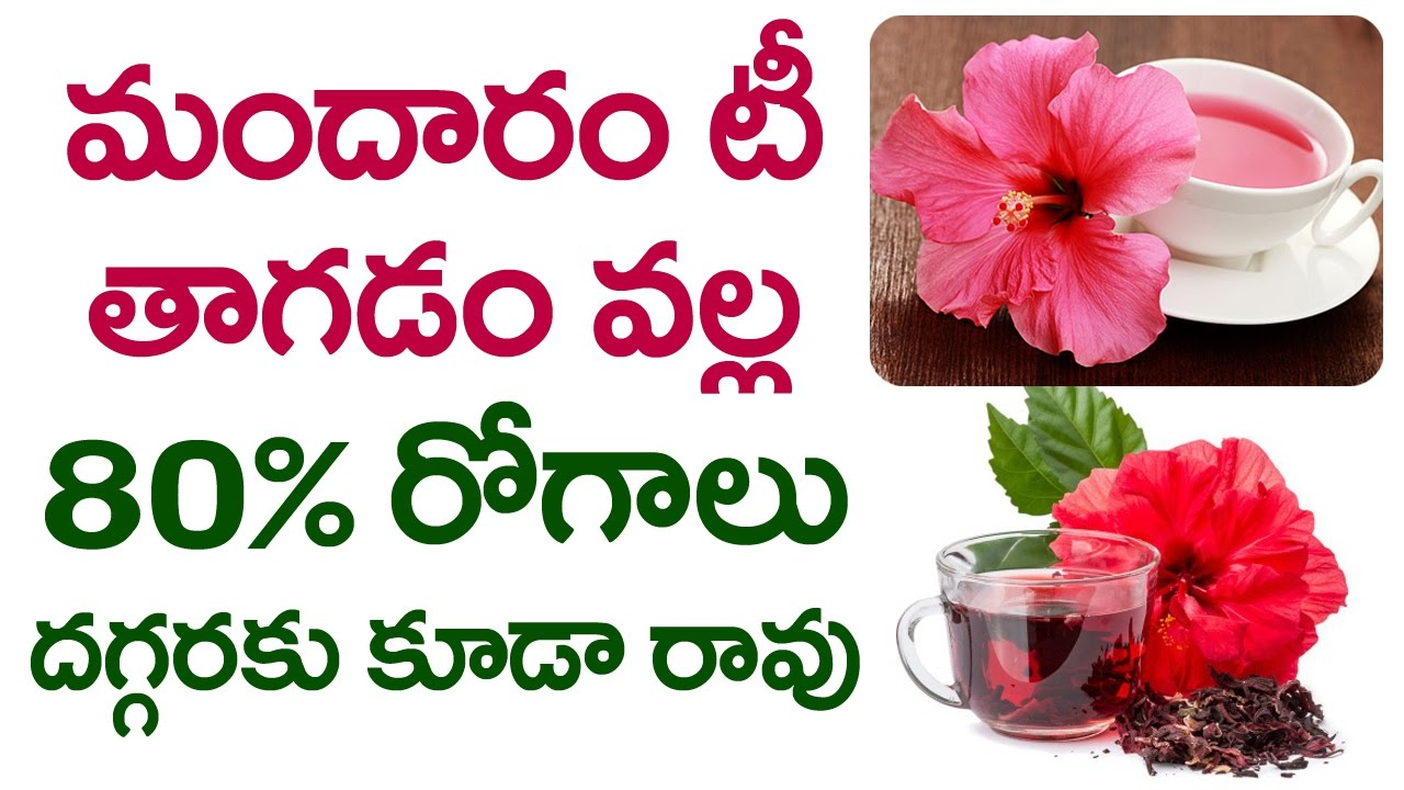 Top 7 Benefits Of Hibiscus Tea How To Prepare Hibiscus Herbal Tea