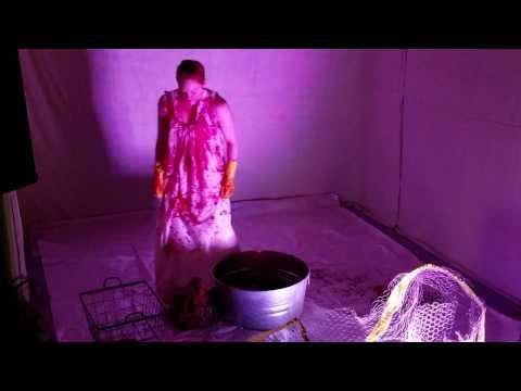 Ashley Lawless live at Modular Art Pods