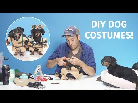 DIY - Making The Ghostbusters Dog Costumes!