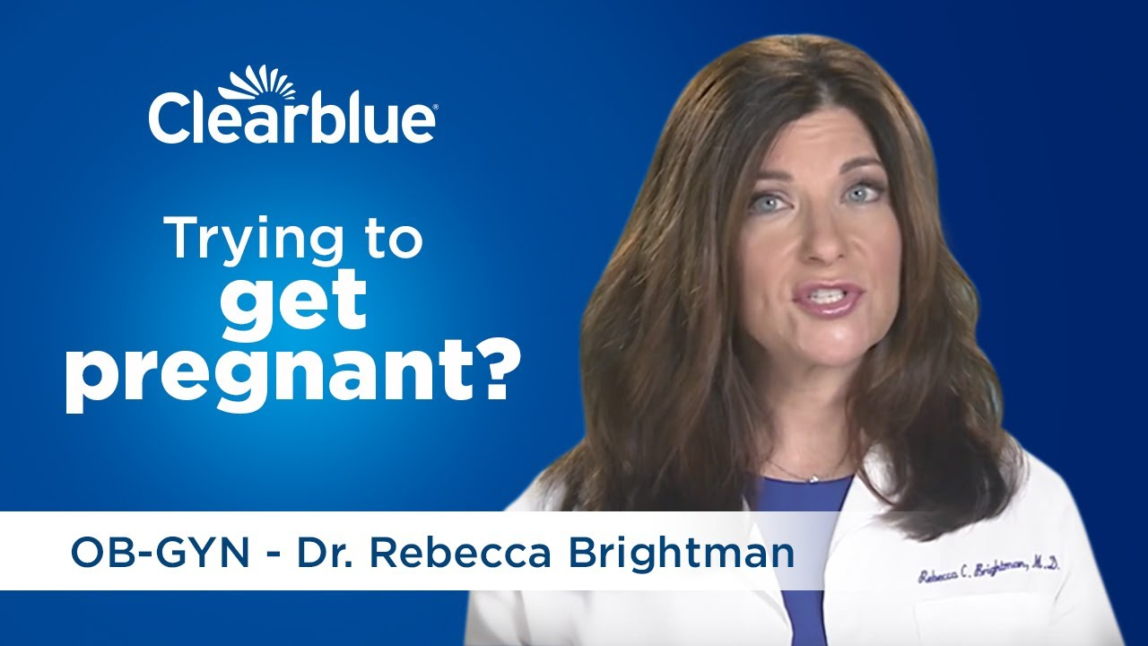 Fertility Monitor with Touch Screen: Fertility Tests – Clearblue