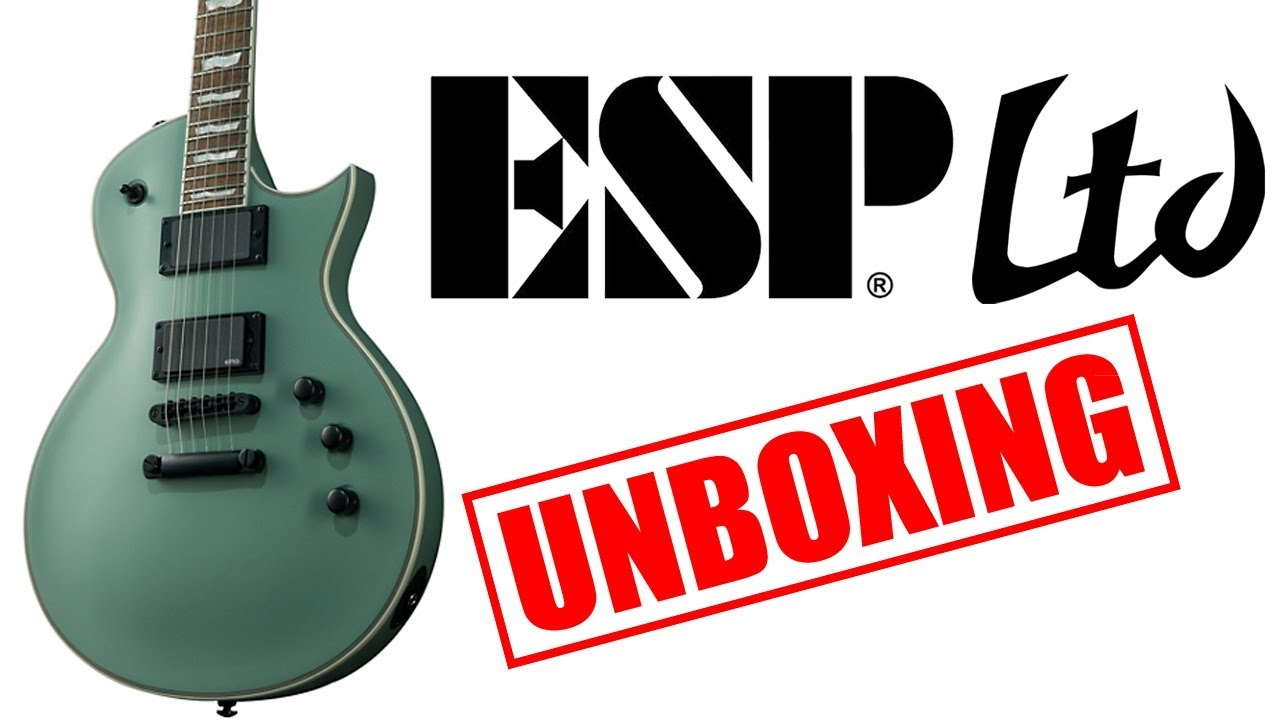 BLACK Earvana 42mm Drop-In Nut For ESP Guitars NEW