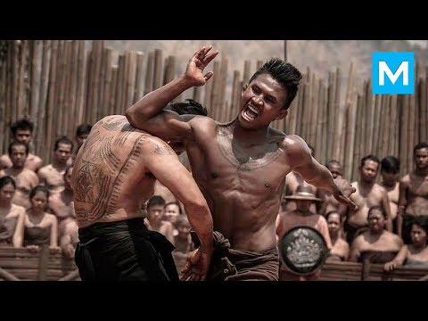 MUAY THAI KILLER - Buakaw Banchamek | Muscle Madness