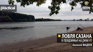 Ловля сазана в предзимье на реке. Алексей Фадеев. Часть 1
