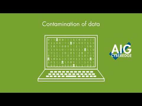 Cyber Insurance Video From AIG