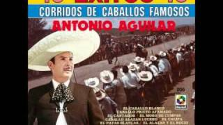 Watch Antonio Aguilar El Grano De Oro video
