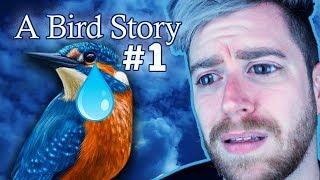 EU FIZ UM AMIGO | A Bird Story #1