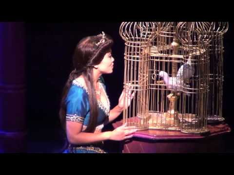 Aladdin a Musical Spectacular at Disney California Adventure