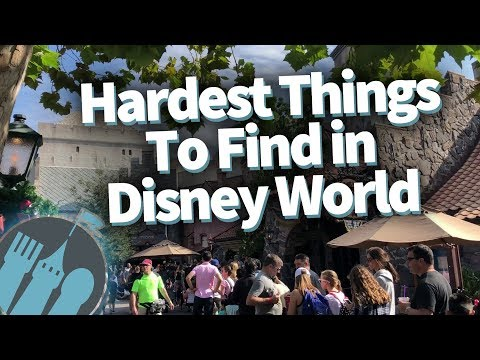 The Hardest Things To Find in Disney World!