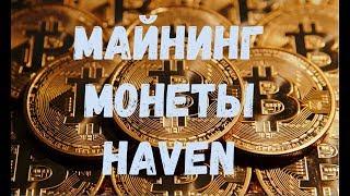 Майнинг монеты Haven алгоритм криптонайт картами AMD, практическое руководство