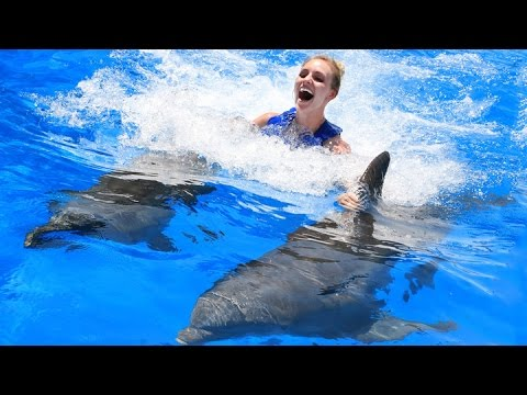 RIDING DOLPHINS TO SAFETY! #DBEJCKSummerVacay