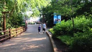 Busch Gardens Williamsburg Walkthru Part 1