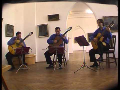 Trio Andrei - Recital cameral