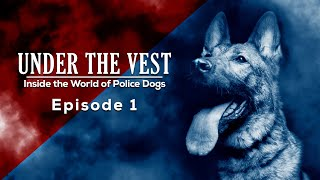Episode 1  Under The Vest: Inside the World of Police Dogs