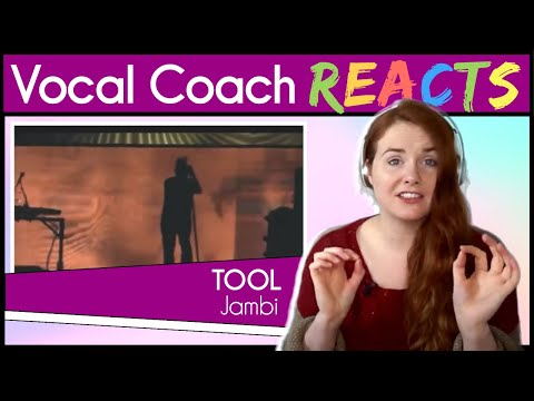 Vocal Coach reacts to Tool - Jambi (Live 2013)