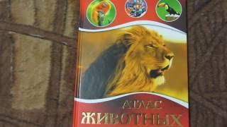 Энциклопедия, Атлас животных, книга для детей от 5 лет, короткий обзор.