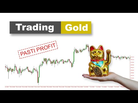 Tahap Belajar Trading FOREX - KENAPA ANDA LOSS.