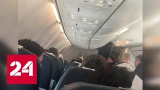 После избиения стюардессы пассажиром самолет экстренно сел в Сочи - Россия 24