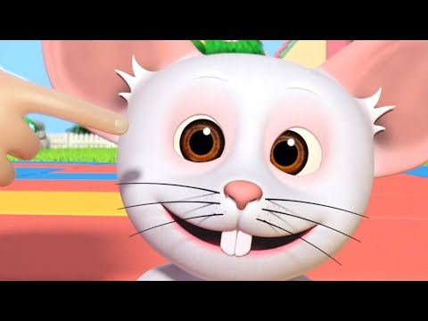 Head Shoulders Knees And Toes - Exercise Song & Rhymes By Little Treehouse