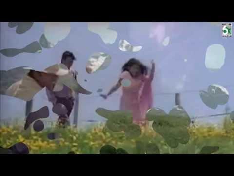 Minsaaram En Meedhu Song | Run | Madhavan | Meerajasmine