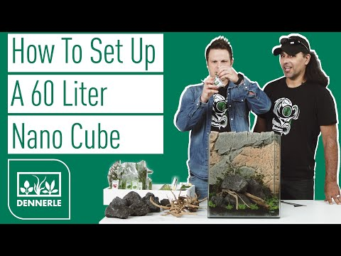 How to set up a 60 liter Nano Cube with a basic Aquascape | Sharkbite #002 | DENNERLE