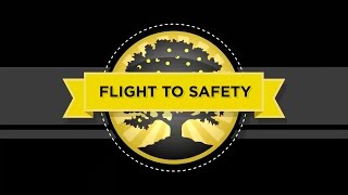 Flight to Safety