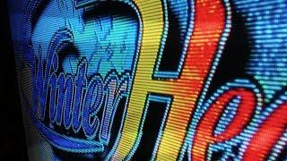 Winter Heat, Sega ST-V arcade cartridge