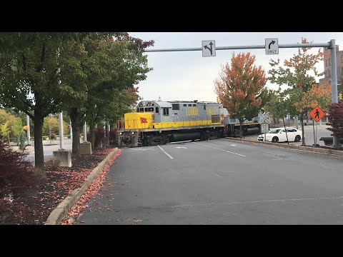 Delaware Lackawanna C420's And Three NS Trains With An NS heritage Unit 8114