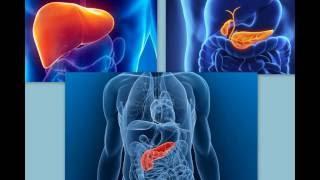 УЗИ органов брюшной полости(, 2016-08-12T12:56:28.000Z)