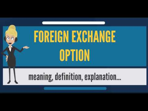 What is FOREIGN EXCHANGE OPTION? What does FOREIGN EXCHANGE OPTION mean?