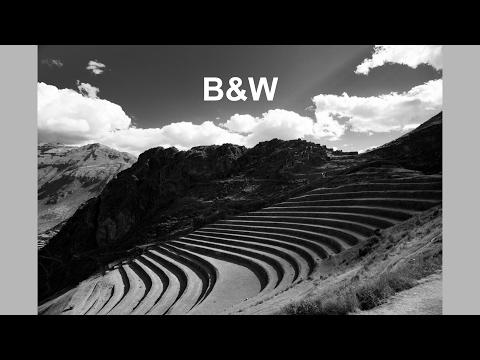 Black and White! (TC Live)