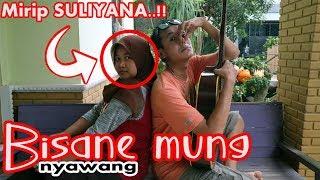 Download lagu BISANE MUNG NYAWANG Suliyana Cover Akustik Albert Kiss
