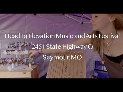 Elevate: Music & Arts Festival