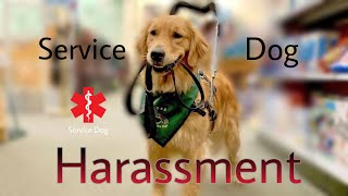 Service Dog Harassment Compilation.